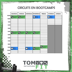 Rooster_2017_CIRCUIT_BOOTCAMP